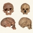 প্রাচীণতম হোমো সেপিয়েন্সের ফসিল আবিস্কার কি বদলে দেবে মানব প্রজাতির ইতিহাস